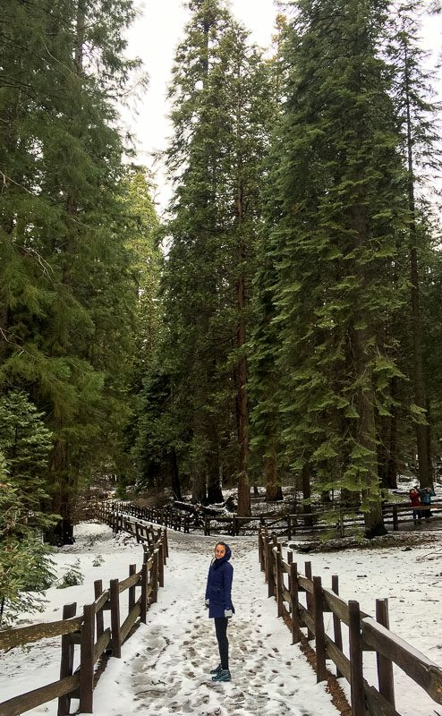 Kings Canyon National Park California