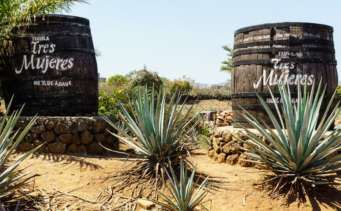 Tequila Tour on a budget - Outsidevibes