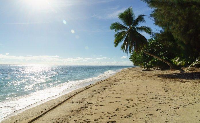 Beach and Palm Trees Rarotonga
