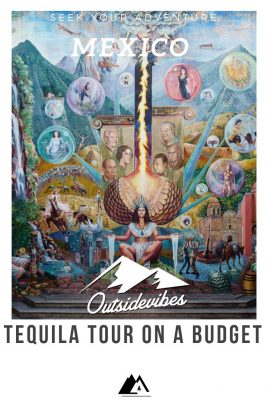 Tequila Tour on a Budget Pinterest