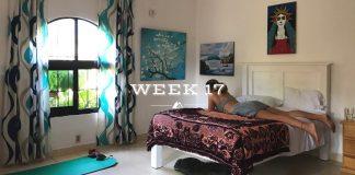 Outsidevibes Weekly Update Week 17